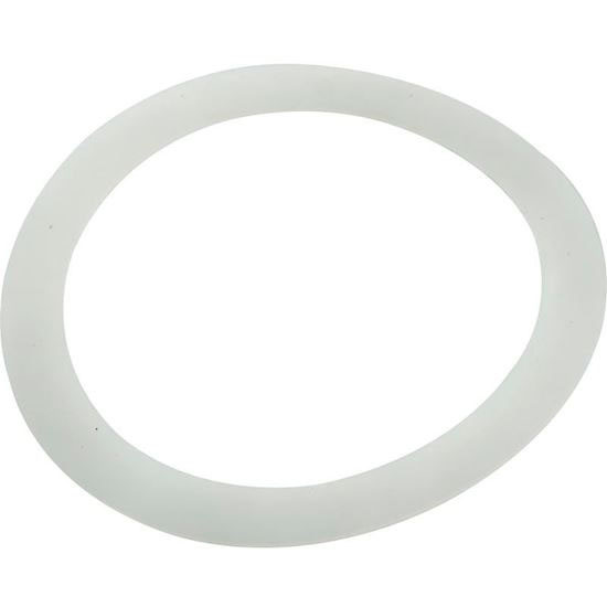 Picture of Adapter Washer, Pentair Pacfab 195004