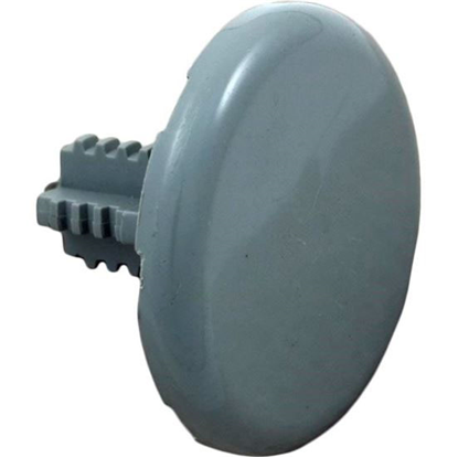 "Picture of Air Injector Cap, Ww, Low Profile, 1-3/4""fd, Gray 672-2137"