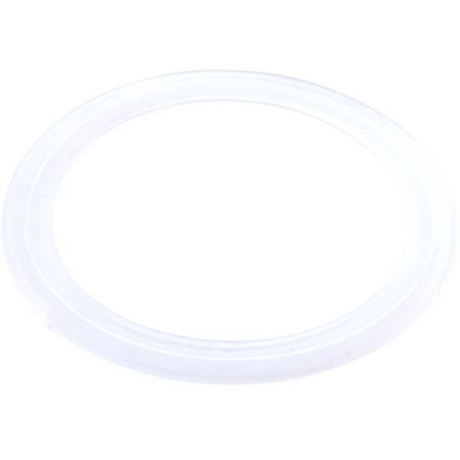 Picture of Jet Gasket: Diverter Jet Ap / Pentair- 47224000