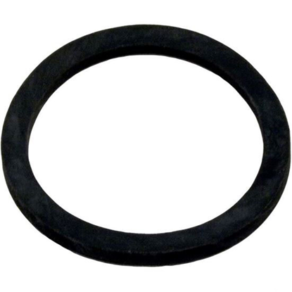 "Picture of 39204800 Gasket Pentair American Eagle Diffuser 1-11/16""id 2""od"