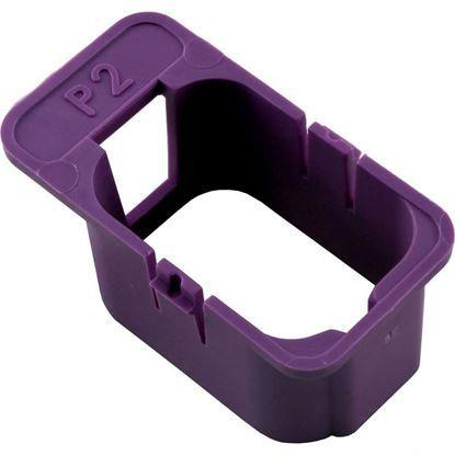 Picture of Keying Enclosure, Hc-P2-Violet, Pump 2 (120/240) 9917-100907