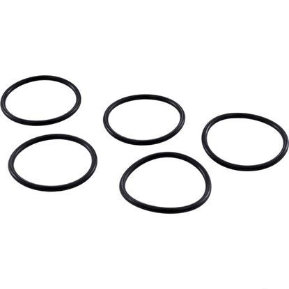 Picture of O-Ring Kit A & A Manufacturing Caretaker Piston 521261