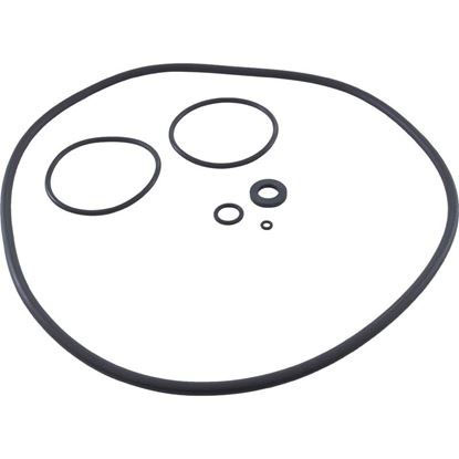 Picture of O-Ring Kit Zodiac Jandy CS Series R0466300