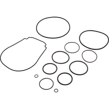 Picture of O-Ring Kit, Zodiac Jandy Jhp R0556500