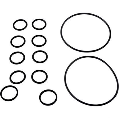 Picture of O-Ring Kit (for 2-in-1 Backwash Valve) R0552400