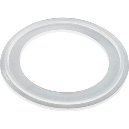 Picture of O-Ring/Gasket, Waterway Mo-Flo, 2""