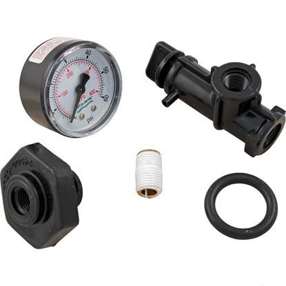 "Picture of Pressure Gauge Assy, Pentair, System 3, 1/4""mpt, 0-60psi, Back Mt 24850-0105"
