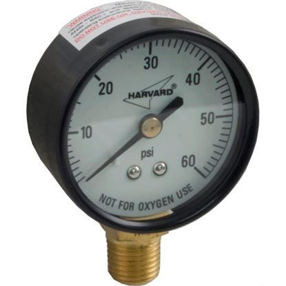 "Picture of Pressure Gauge, 1/4""mpt, 0-60psi, Bottom Mount, Generic IPG602-4LNL"