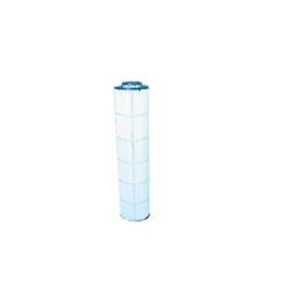 Picture of Filter Cartridge: 100 Sq Ft - Pa100n