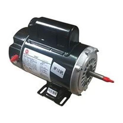 Picture of Pump Motor: 1.0hp 115v 2-Speed 48 Frame Thrubolt - Bn37