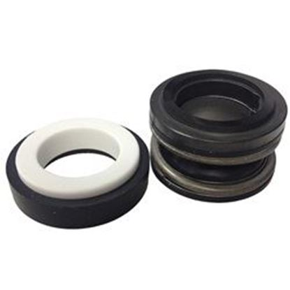 Picture of Pump Seal:  3/4' Viton- Ps-201v-Cms