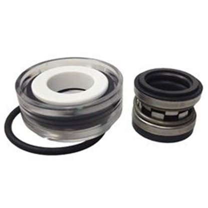 Picture of Pump Seal:  5/8' Viton- Ps-3869