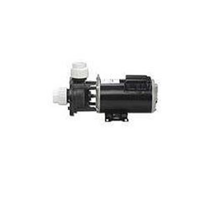 Picture of 02607000-1010 Pump: .75hp 115v 60hz 2-Speed 48 Frame Fmcp-02607000-1010