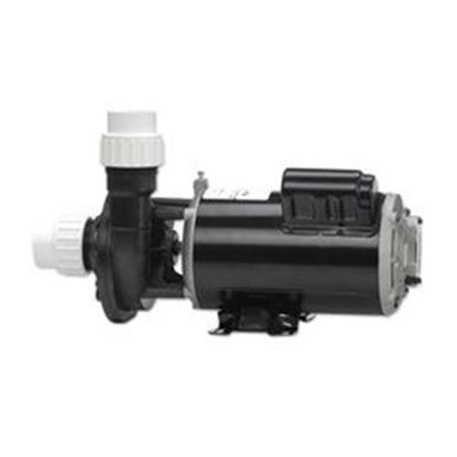Picture of 02110000-1010 Pump: 1.0hp 115v 60hz 2-Speed 48 Frame Fmhp-02110000-1010