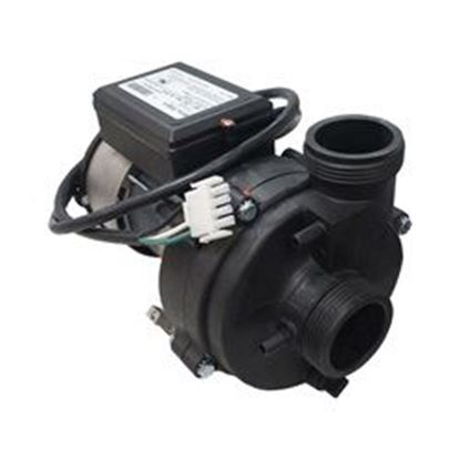 Picture of Pump: 1/4hp 1-Speed 230v 60hz- 1070022