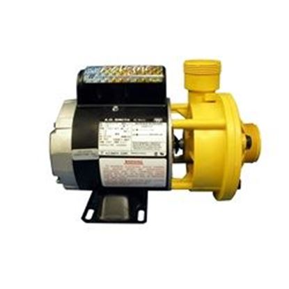 Picture of Pump: 1/8hp 40gpm 230v 1-1/2' Union Ready Iron Might- 3410020-1E