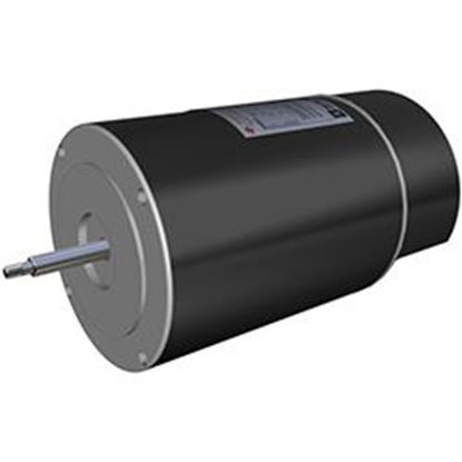 Picture of 2 Hp Full Rate Motor Spx1620z1bns