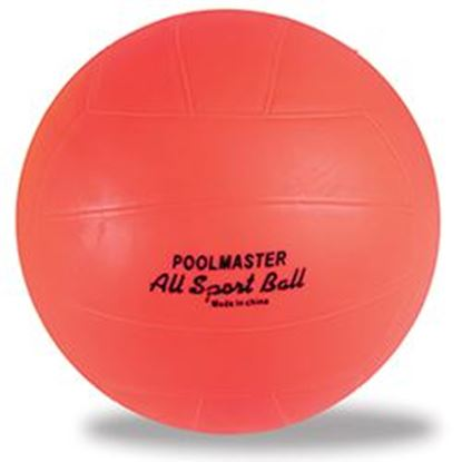 Picture of Deluxe Water Sport Ball Pm72700