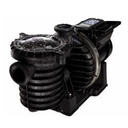Picture of Intellipro Variable Speed Pump P6E6VS4H209L