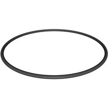 Picture of Filter Head O-Ring (A19)   Cx900f