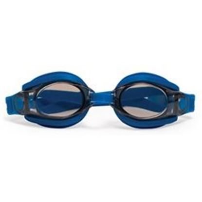 Picture of Fog Free Silicone Goggles &Case Pm94750