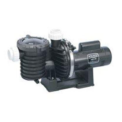 Picture of MAX-E-PRO 2 HP 115/230V 60EE P6E6GL