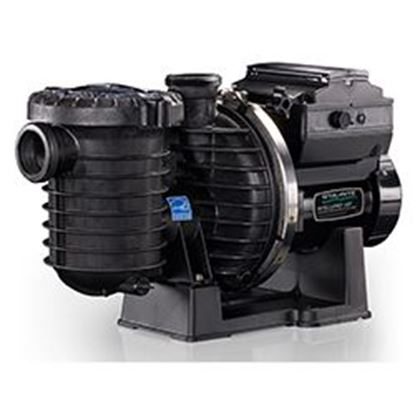 Picture of Pump Intellipro Vsf Var Speed And Flow Pf013004