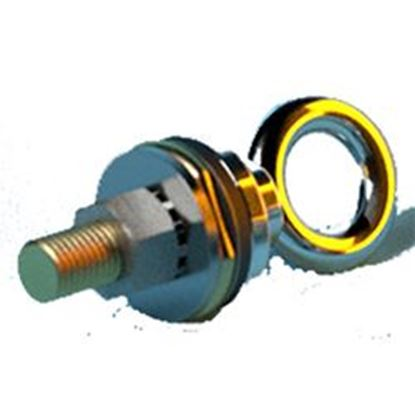 Picture of Removable Eyebolt W/Anchor PI72B