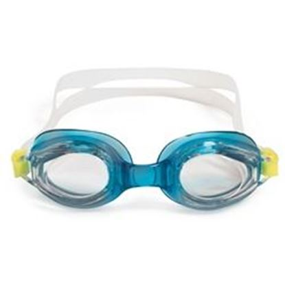 Picture of VANTAGE COMPETITION GOGGLES PM94555